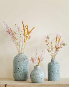 fleurs séchés dans vases bleus