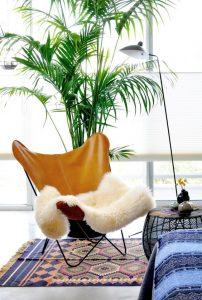 plante derrière fauteuil
